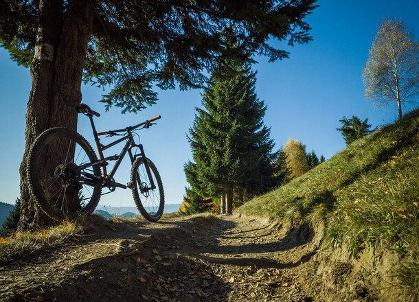 Traseu biciclete